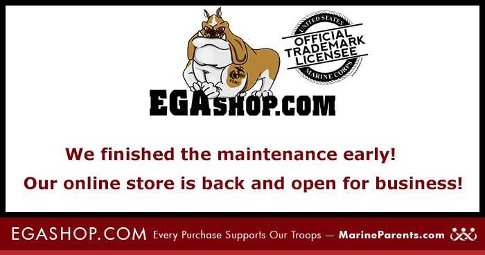 EGA Maintenance