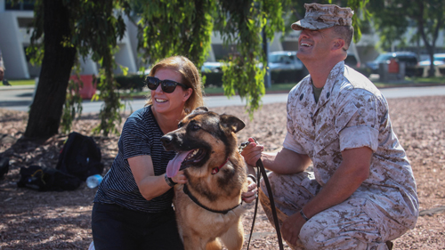 Marine Working Dog Receives Award