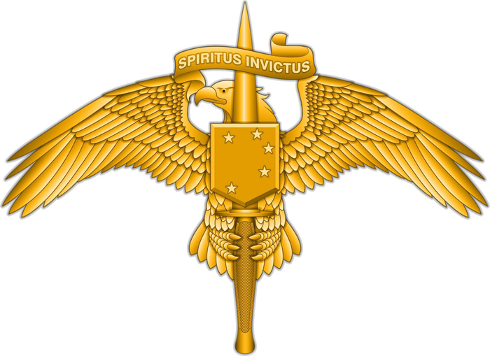 Marine Corps News: Marine Raiders to Wear New Insignia on Uniforms