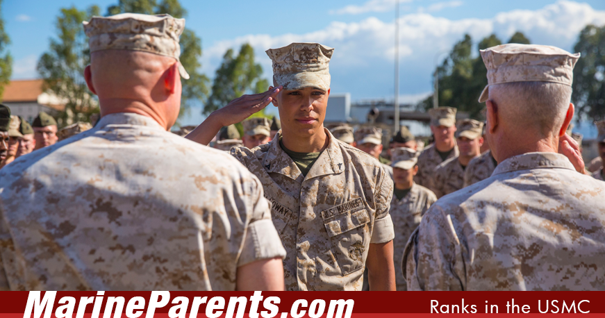 Ranks In Marine >> Ranks In The Marine Corps